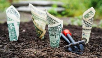 Что мешает зарабатывать деньги: эксперт назвал несколько причин
