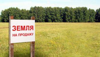 Эксперты рассказали о рисках покупки земли в России