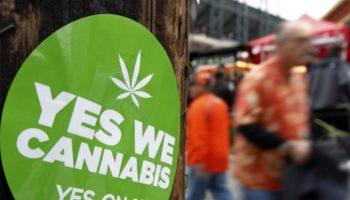 В США пройдёт голосование за легализацию марихуаны в стране