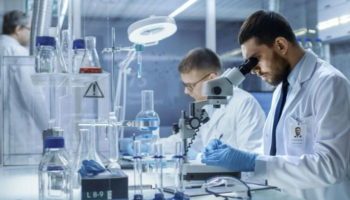 Немецкие учёные узнали, как замедлить развитие рака